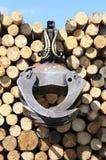 Bois de chauffage de ramassage Image stock