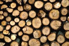 Bois de chauffage de séchage Photographie stock libre de droits