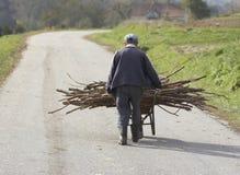 Bois de chauffage de transport de vieil homme Photographie stock libre de droits