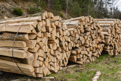 Bois de chauffage empaqueté - énergie favorable à l'environnement photographie stock libre de droits