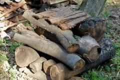 Bois de chauffage empilé dans le domaine Photographie stock libre de droits
