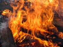 Bois de chauffage en flammes, plan rapproché photographie stock libre de droits