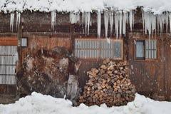 Bois de chauffage en hiver Photos stock