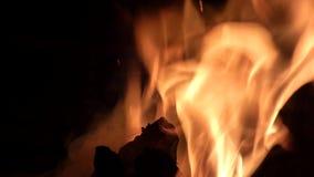 Bois de chauffage et charbons brûlants clips vidéos