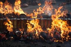 Bois de chauffage et flamme Photos libres de droits