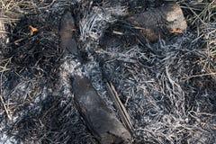 Bois de chauffage et paille brûlés photo stock