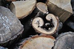 Bois de chauffage intéressant photos stock