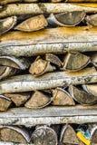 Bois de chauffage soigné empilé photo libre de droits
