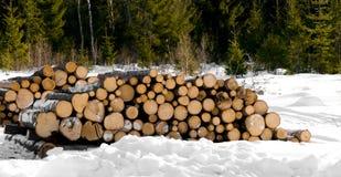 Bois de construction Image libre de droits
