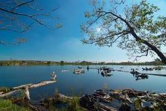 bois de construction de mémoire de lac Images stock