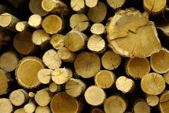 Bois de construction, logarithmes naturels, bois de chauffage Photographie stock