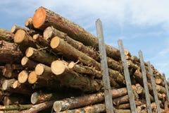 Bois de construction par le chargement de camion Images stock