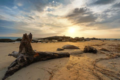 Bois de construction sur la plage au coucher du soleil Photos libres de droits