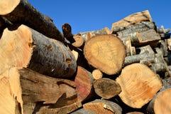 Bois de coupe de Brown pour le bois de chauffage Images libres de droits