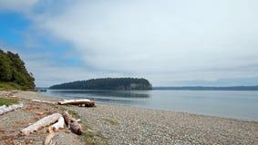 Bois de flottage sur le rivage du parc d'état de Tidelands d'éclat sur la baie de Bywater près du port Ludlow dans Puget Sound en photo stock