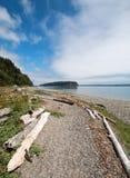Bois de flottage sur le rivage du parc d'état de Tidelands d'éclat sur la baie de Bywater près du port Ludlow dans Puget Sound en images stock