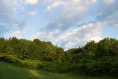 Bois de Liesse Park Stock Photography