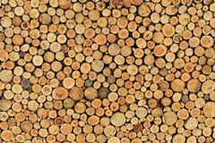 bois de mur Photographie stock libre de droits