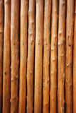 Bois de pin Photos libres de droits