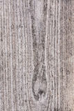 Bois de pin de plan rapproché texturisé Images stock