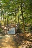 Bois de voie de passerelle en bois Photos libres de droits