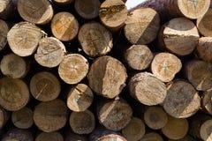 Bois des rondins ronds empilés Images stock
