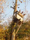 bois en bois de poteau de boîte en métal de génération d'approvisionnement de courant électrique Image libre de droits