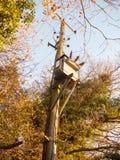 bois en bois de poteau de boîte en métal de génération d'approvisionnement de courant électrique Photographie stock libre de droits