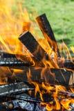 Bois en flammes Images libres de droits