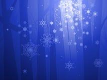 Bois enchantés de l'hiver Photo stock