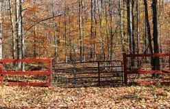 Bois entrants de porte dans l'automne Photo stock