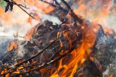 Bois et flammes brûlants photos stock