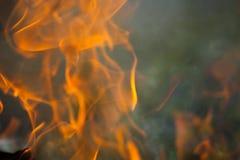 Bois et flammes brûlants images libres de droits
