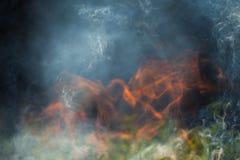 Bois et flammes brûlants photos libres de droits