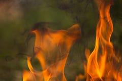 Bois et flammes brûlants image libre de droits