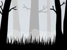 Bois fantasmagoriques Images libres de droits