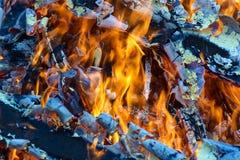 Bois, flamme et fumée brûlants sur le fond bleu Images stock