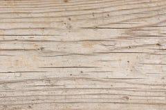 Bois léger avec des fissures Image libre de droits