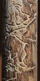 Bois mort d'arbre mangé par le scarabée de sondage Image stock