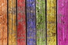 Bois multi de couleur Photo stock