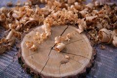 Bois naturel d'arbre avec l'écorce et les copeaux Fermez-vous vers le haut du disque en bois naturel Détails en bois de tronçon images libres de droits