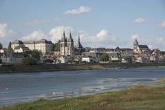 Bois och floden Loire Frankrike Arkivbild