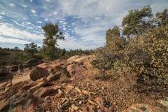 Bois pétrifié et cailloux lisses parmi des rochers de grès Images libres de droits