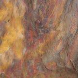 Bois pétrifié qui ressemble à la pierre colorée photographie stock libre de droits