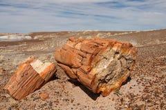 Bois Petrified au stationnement national de forêt Petrified Image libre de droits