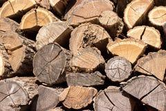 Bois, pile, écorce, hêtre, branches, fond Images stock