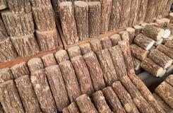 Bois pour le produktion de thanaka Photographie stock