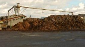 Bois réutilisé Photo stock