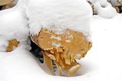Bois sous la neige Photographie stock libre de droits