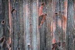 Bois superficiel par les agents Photographie stock libre de droits
